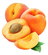 buy-apricot-online