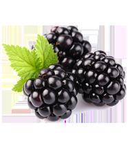 buy-blackberry-online