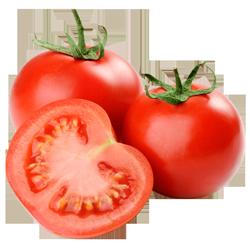 buy-tomato-online