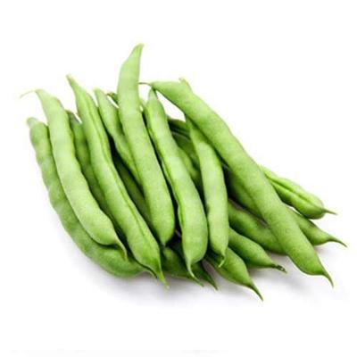 buy-fresh-beans-online