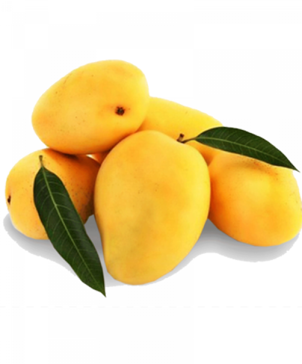 buy fresh mango gurgaon