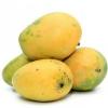 Mango Dussehri