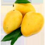 buy-mango-kesari-online