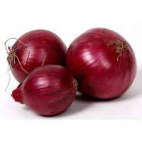 buy onion online
