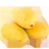 Mango Safeda