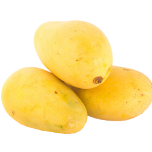 buy safeda mango in gurgaon